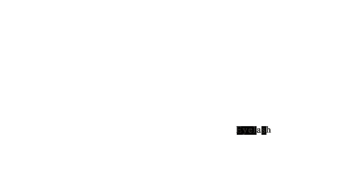Menu – Eyelash